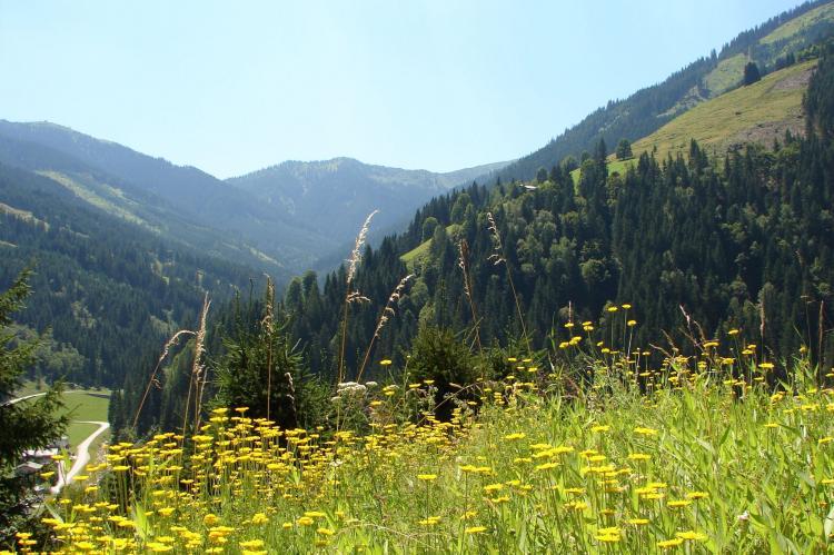 FerienhausÖsterreich - Salzburgerland: Chalet Huski Viehhofen  [31]