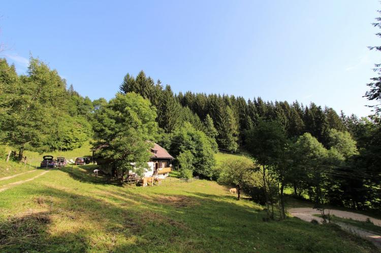 Holiday homeAustria - Carinthia: Brentlhütte  [33]