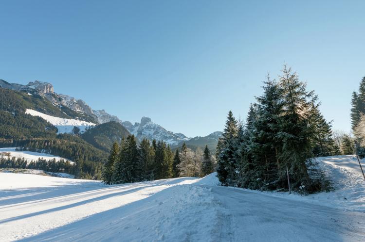 VakantiehuisOostenrijk - Salzburgerland: Dachstein Chalet Alpenrose Haustier erlaubt  [17]