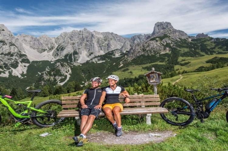 VakantiehuisOostenrijk - Salzburgerland: Dachstein Chalet Alpenrose Haustier erlaubt  [25]
