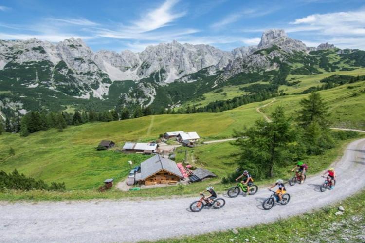 VakantiehuisOostenrijk - Salzburgerland: Dachstein Chalet Alpenrose Haustier erlaubt  [24]