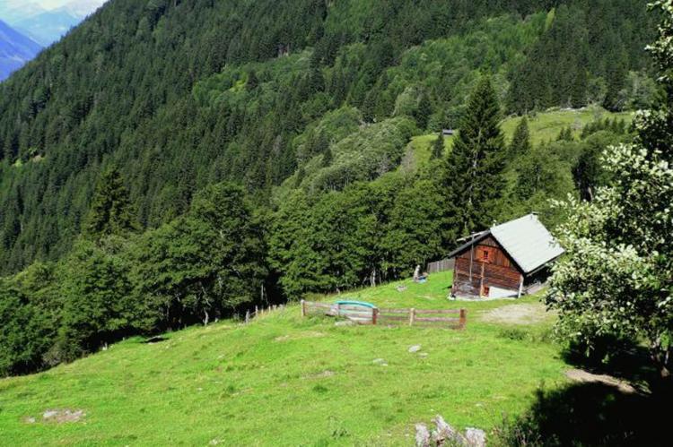 Holiday homeAustria - Carinthia: Unterhofer Alm  [4]