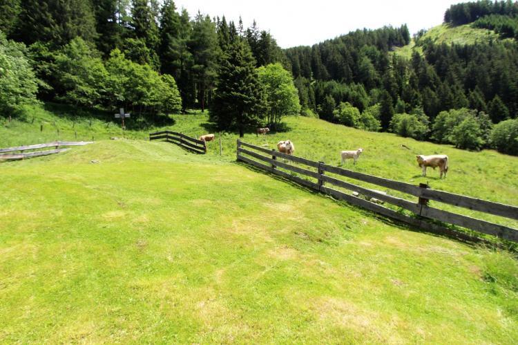 Holiday homeAustria - Carinthia: Unterhofer Alm  [19]