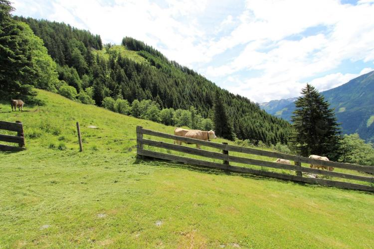 Holiday homeAustria - Carinthia: Unterhofer Alm  [7]
