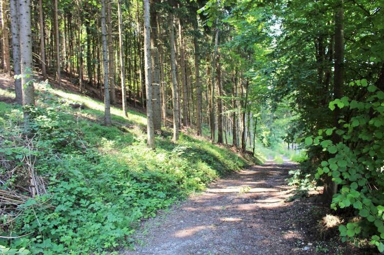 Holiday homeAustria - Carinthia: Biohof Claudia  [25]