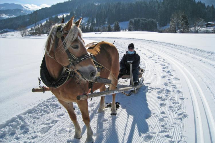Holiday homeAustria - Tirol: Thumahof  [23]