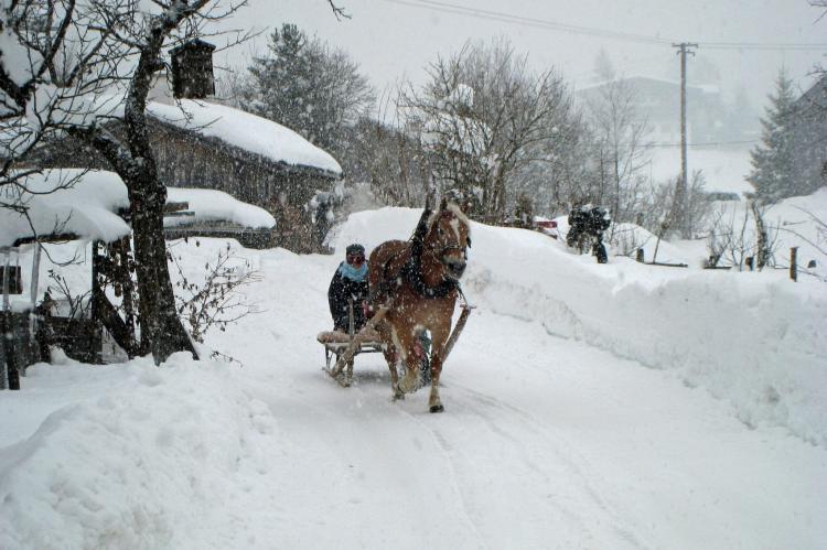 Holiday homeAustria - Tirol: Thumahof  [24]