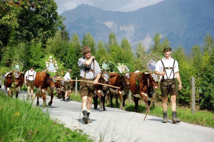 Holiday homeAustria - Salzburg: Ullach XL  [26]
