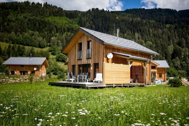 VakantiehuisOostenrijk - Steiermark: Chalet Wellness 8p  [1]