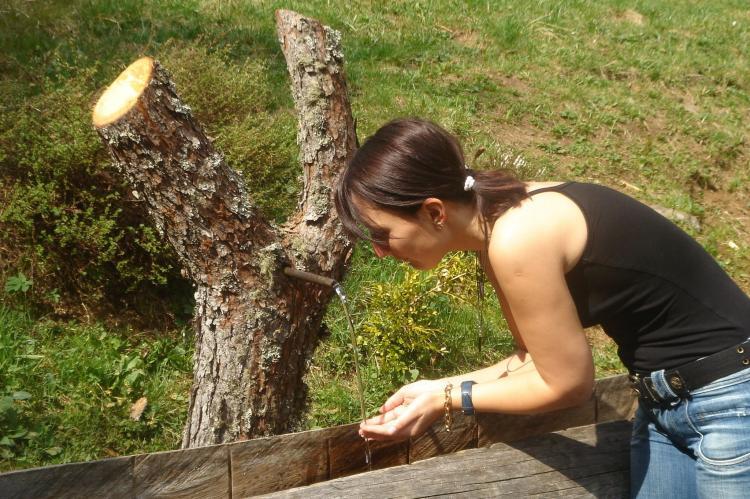 Holiday homeAustria - Carinthia: Almhütte im Walde  [15]
