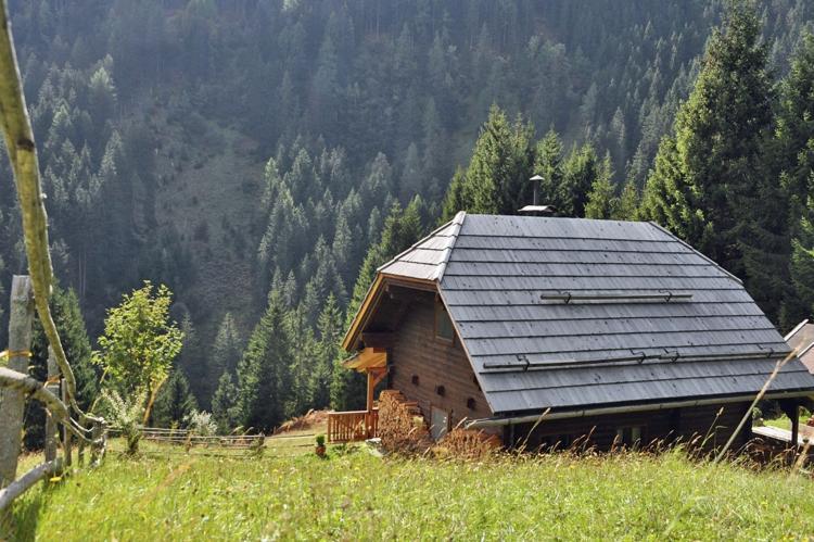 Holiday homeAustria - Carinthia: Almhütte im Walde  [6]