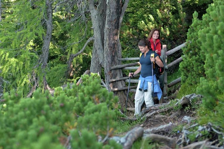 Holiday homeAustria - Carinthia: Almhütte im Walde  [18]