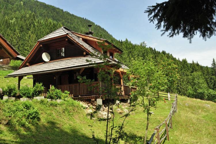 Holiday homeAustria - Carinthia: Almhütte im Walde  [2]