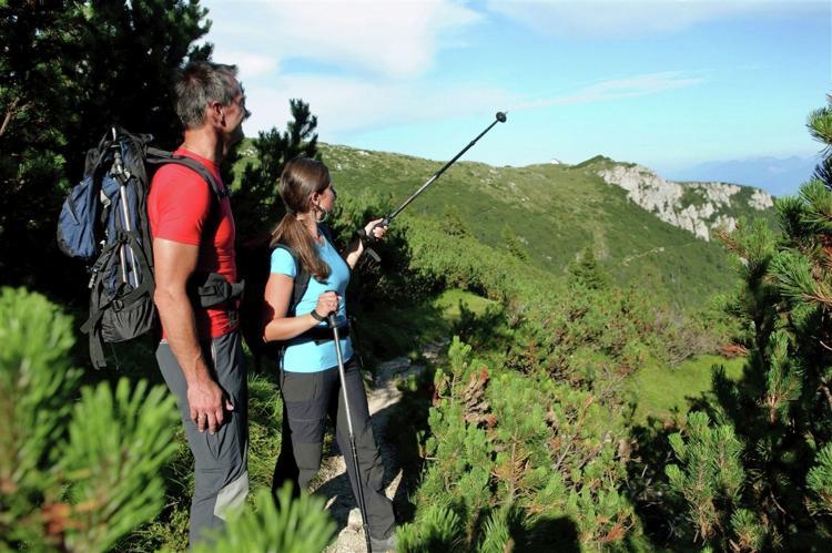 Holiday homeAustria - Carinthia: Almhütte im Walde  [17]
