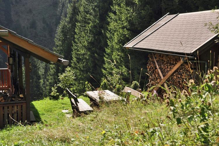 Holiday homeAustria - Carinthia: Almhütte im Walde  [14]