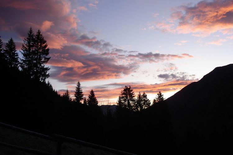 Holiday homeAustria - Carinthia: Almhütte im Walde  [16]