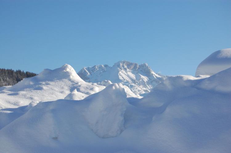 Holiday homeAustria - Tirol: Wald 2  [40]
