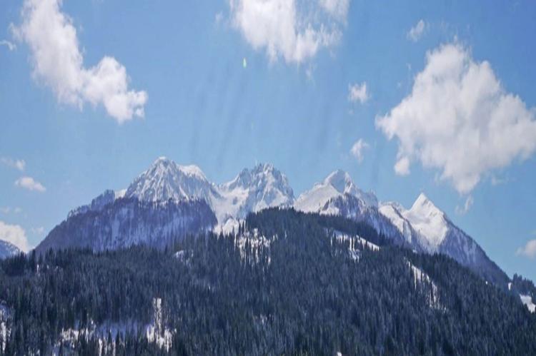 Holiday homeAustria - Tirol: Wald 2  [38]