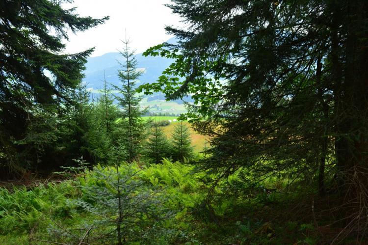 Holiday homeAustria - Tirol: Chalet Wald xxl  [31]