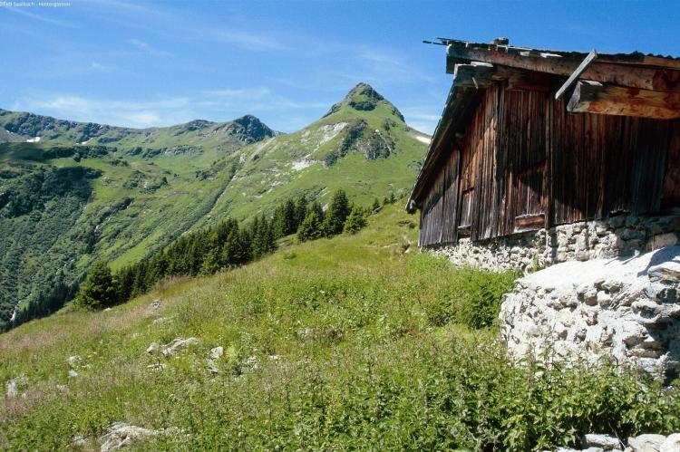 Holiday homeAustria - Salzburg: Alpensteinbock Saalbach A  [22]