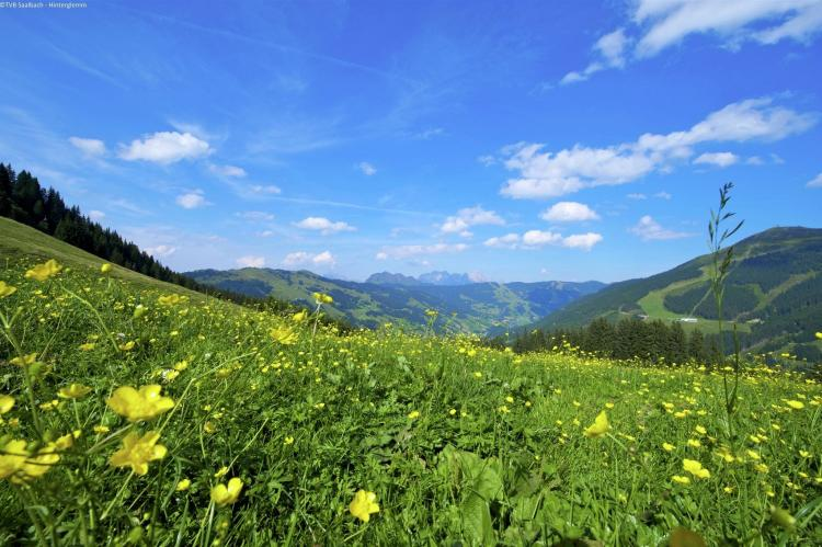 Holiday homeAustria - Salzburg: Alpensteinbock Saalbach A  [18]