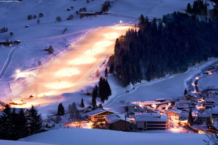 FerienhausÖsterreich - Salzburgerland: Alpensteinbock Saalbach B  [28]