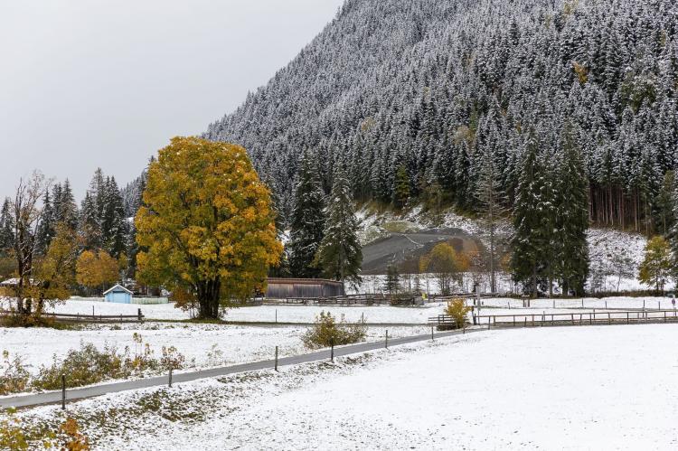Holiday homeAustria - Salzburg: Mittenwald Top 2  [45]