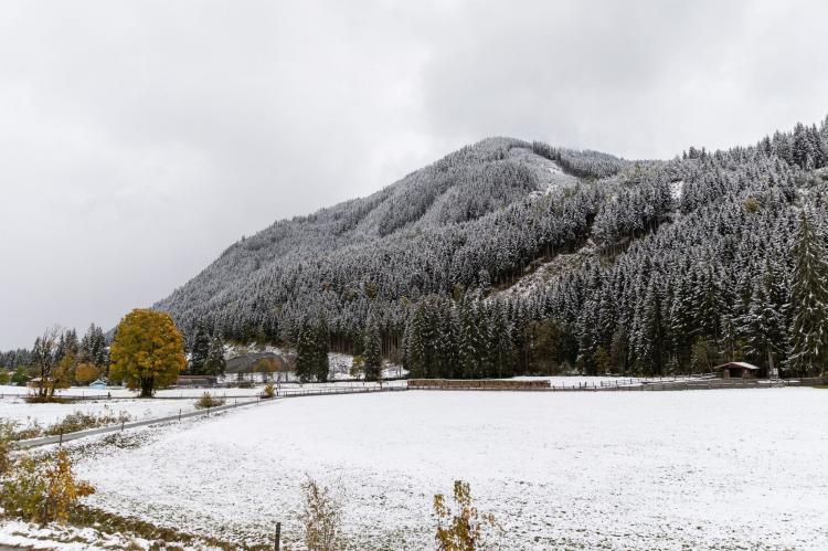 Holiday homeAustria - Salzburg: Mittenwald Top 2  [47]