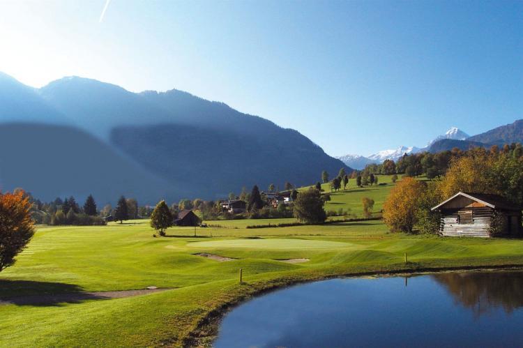 FerienhausÖsterreich - Salzburgerland: Alpensteinbock Saalbach L  [25]