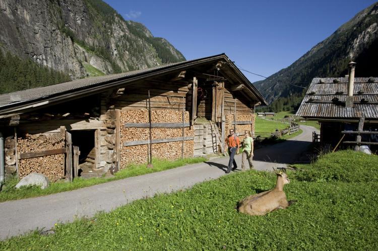 Holiday homeAustria - Tirol: Honsnerhof  [28]
