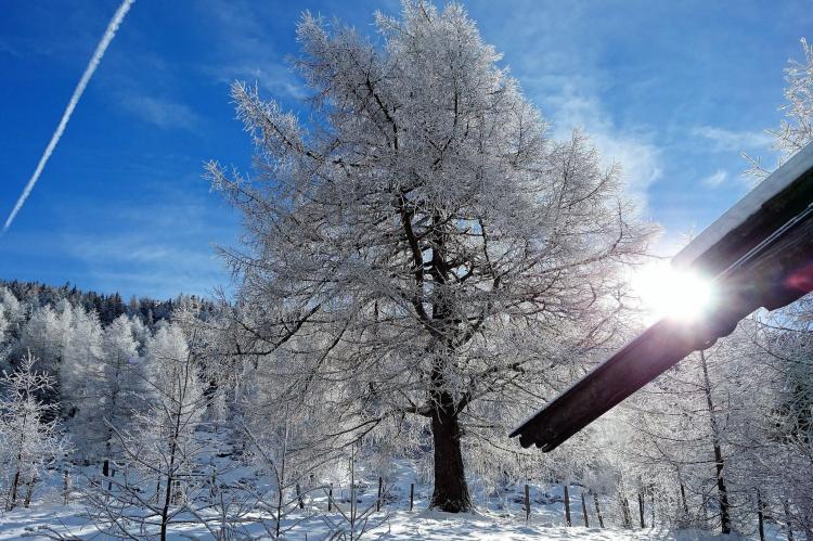 Holiday homeAustria - Carinthia: Samerhütte  [23]