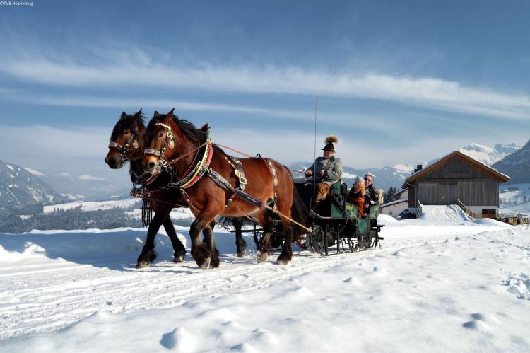 Holiday homeAustria - Salzburg: Lindelodge  [35]