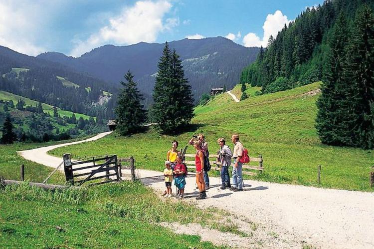 Holiday homeAustria - Carinthia: Gemse  [27]