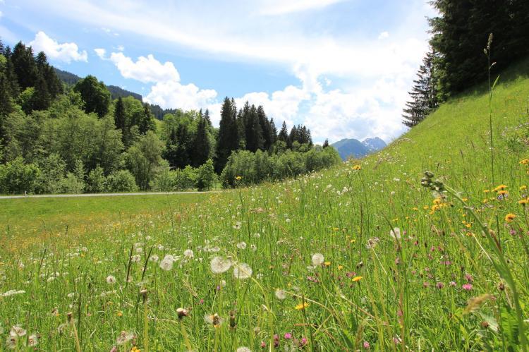 VakantiehuisOostenrijk - Tirol: Reiserer 2  [3]