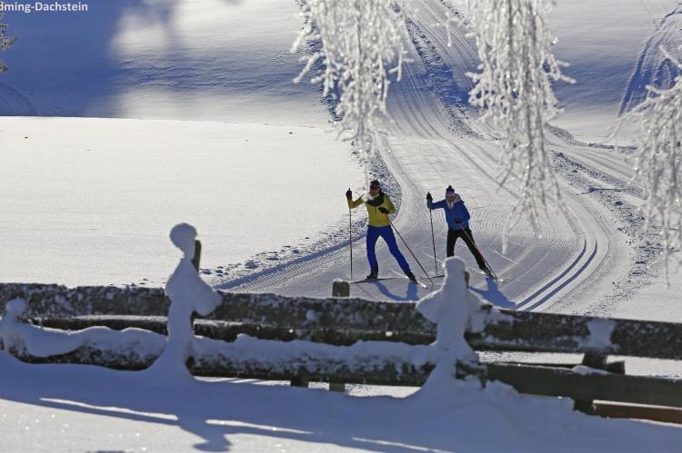 Holiday homeAustria - Upper Austria: Hallstatt-Dachstein Luxury 7 Gosau  [40]