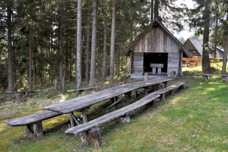 VakantiehuisOostenrijk - Steiermark: Hebalm  [13]