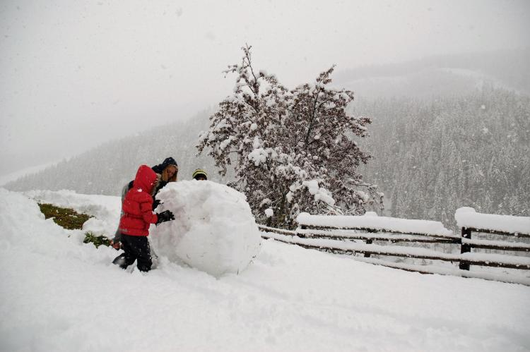 Holiday homeAustria - Carinthia: Chalet Innerkrems 1  [30]