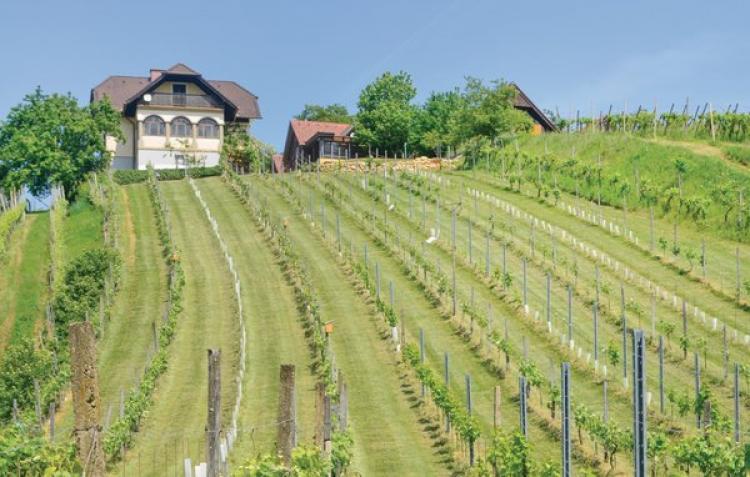 VakantiehuisOostenrijk - Steiermark: Breitenfeld  [13]
