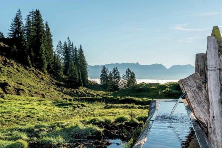 Holiday homeAustria - Salzburg: Edith  [20]