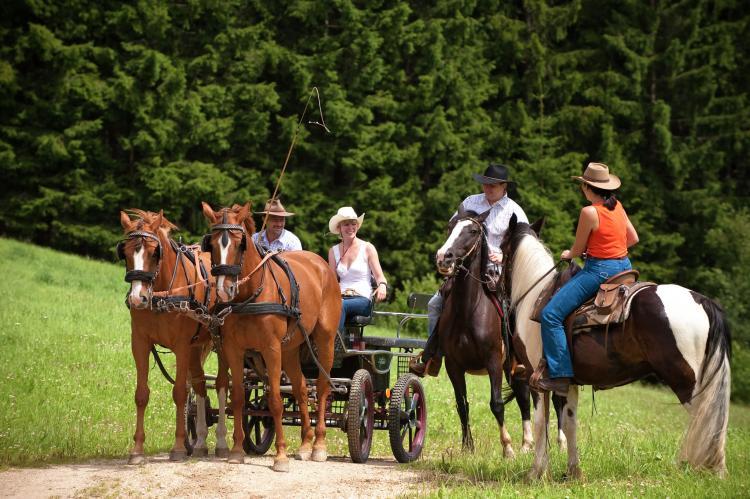 Holiday homeAustria - Upper Austria: Hallstatt-Dachstein Luxury Gosau 6P  [23]