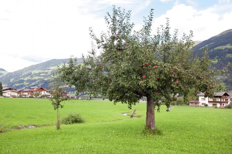 VakantiehuisOostenrijk - Tirol: Luxner  [28]