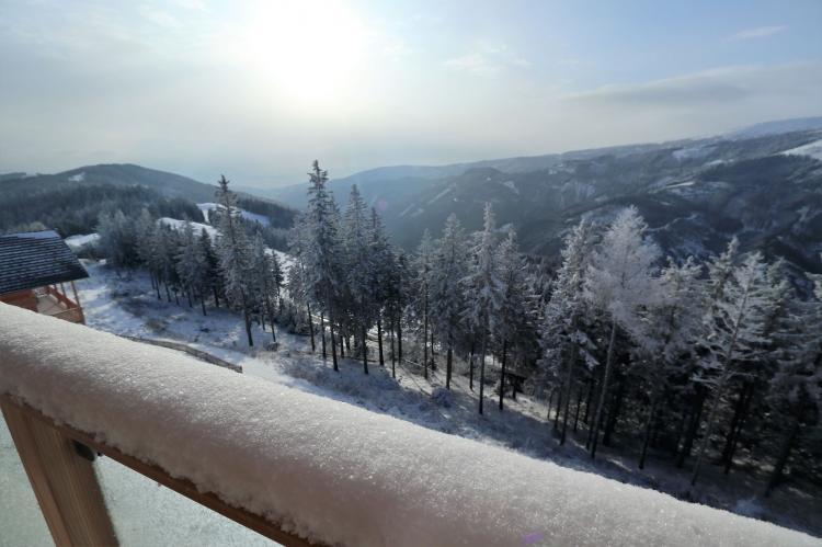 VakantiehuisOostenrijk - Karinthië: Alpina Lodge  [31]