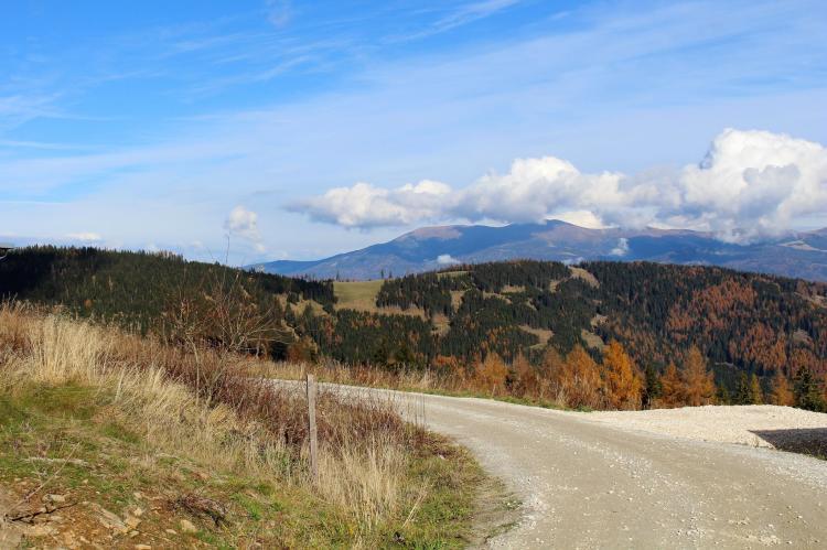 VakantiehuisOostenrijk - Karinthië: Alpina Lodge  [26]