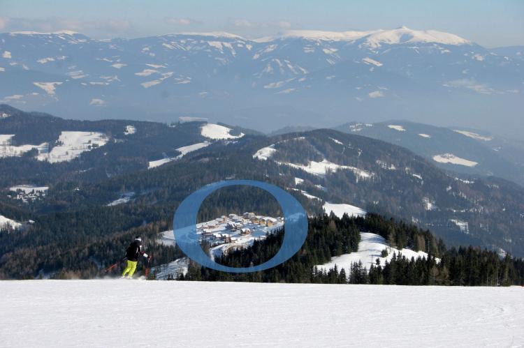 VakantiehuisOostenrijk - Karinthië: Alpina Lodge  [32]