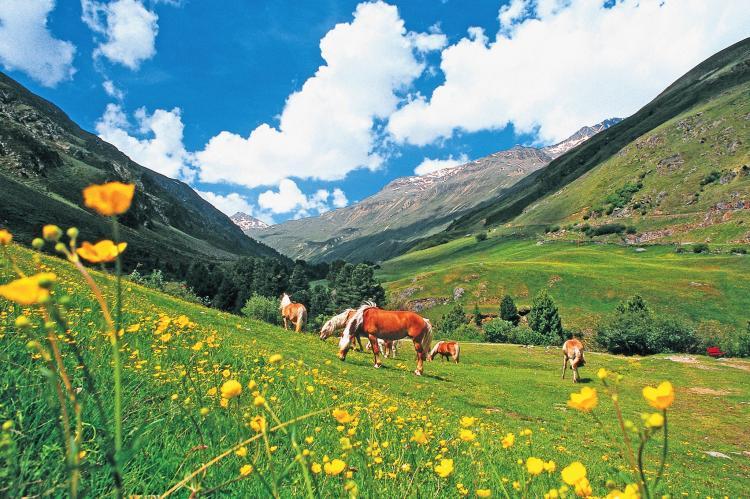Holiday homeAustria - Tirol: Sölden Apartment E  [14]
