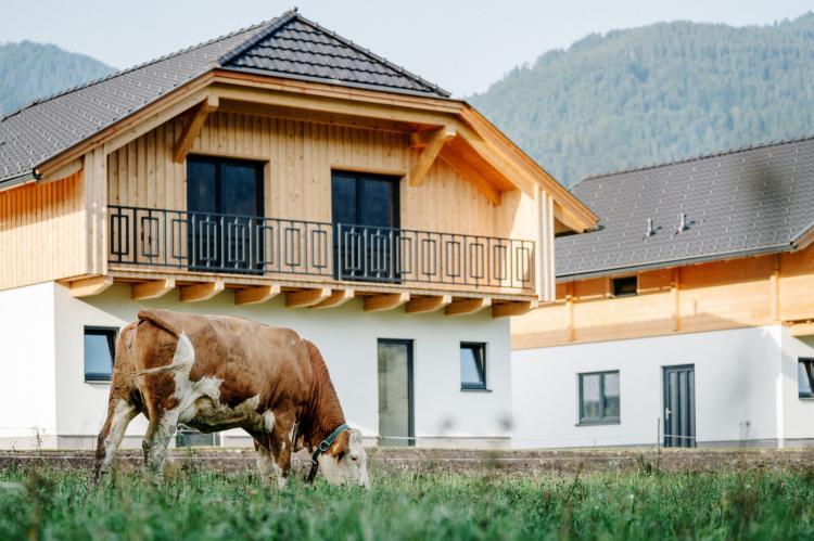 VakantiehuisOostenrijk - Karinthië: Nassfeld Holiday Parcs  [1]