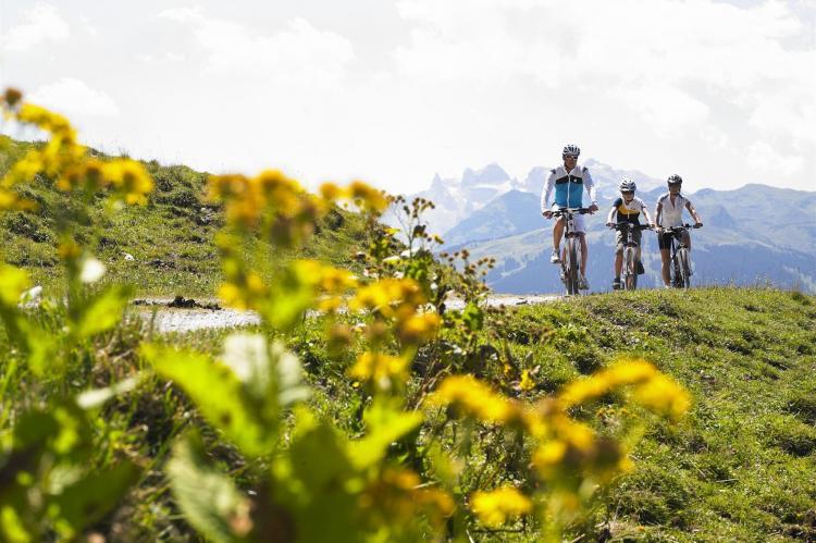 Holiday homeAustria - Vorarlberg: Luxurious Montafon Chalet 2  [25]