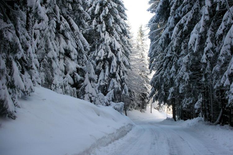 Holiday homeAustria - Carinthia: Barzaunerhof  [17]