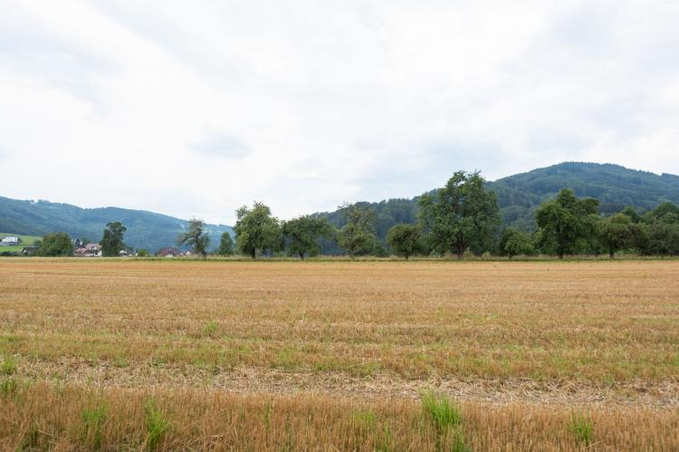 Holiday homeAustria - Upper Austria: Countryside Home with Swimming Pool I  [35]