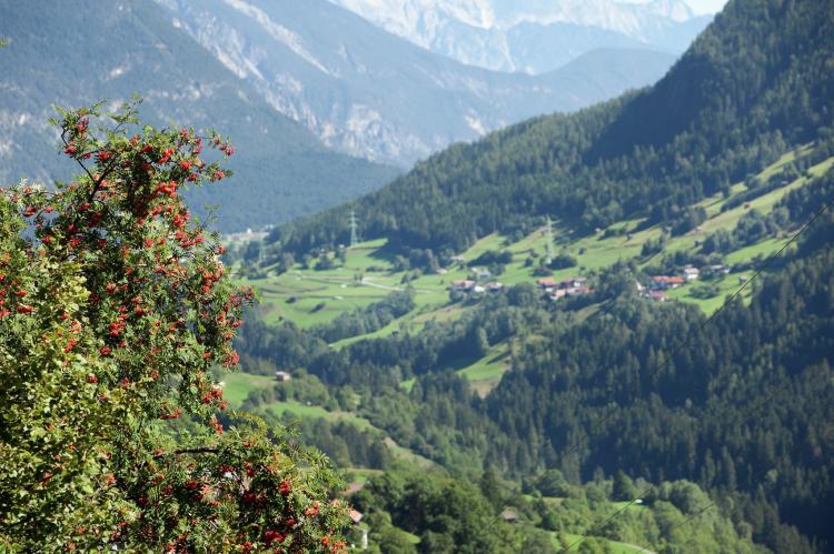 Holiday homeAustria - Tirol: Neururer  [26]